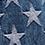 STARS LIGHT BLUE RIG